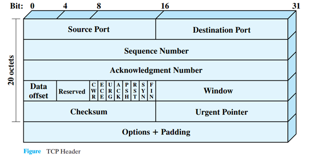 Header format for TCP (Transmission Control Protocol) | Brave Learn